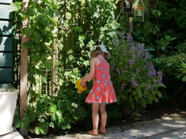 Rossella in ecologische tuin