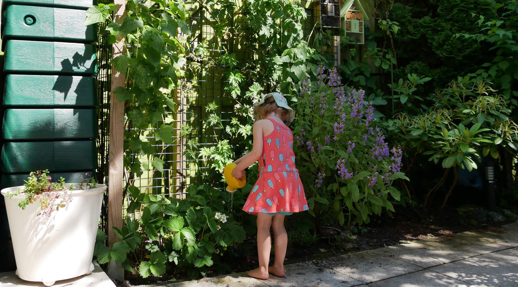 6 Tips om een ecologische tuin aan te leggen
